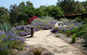 Glendale/ Glenoak Canyon - Picture This Land